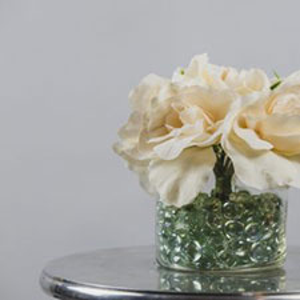 Cream Peony Flowers 2